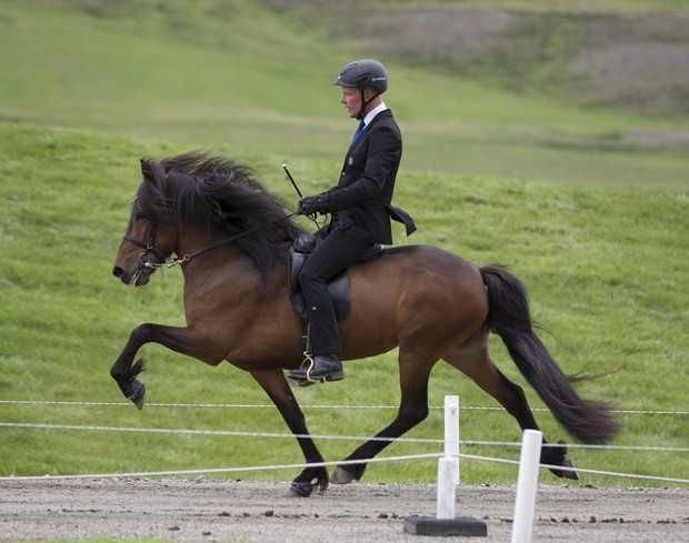 Þota frá Prestsbæ og Þórarinn Eymundsson. Mynd: Eiðfaxi.